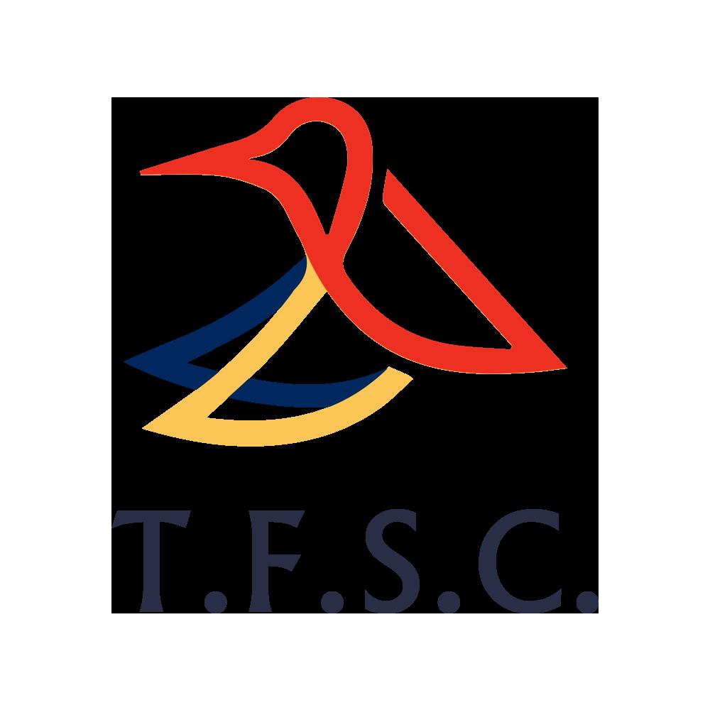 logo-triton-color